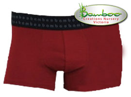 Mens trunks - Burnt Red